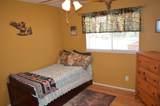 45315 Forest Ridge Drive - Photo 31