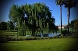 1704 Green Sage Avenue - Photo 4