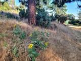 33249 Road 224 - Photo 26