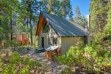42068 Hanging Branch Road - Photo 44