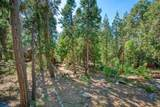 42068 Hanging Branch Road - Photo 48