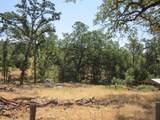 45680 Little River Ranch Rd - Photo 35