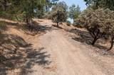 41892 Road 222 - Photo 36