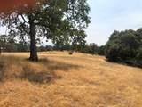 0-4.52 AC Quail Hollow Court - Photo 14