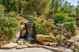 39367 Pine Ridge Rd - Photo 39