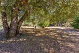39367 Pine Ridge Rd - Photo 52