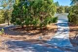 39367 Pine Ridge Rd - Photo 55