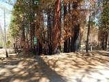 0 Tamarack Trail - Photo 12
