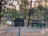 34958 Shady Oak Drive - Photo 3