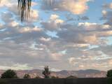 441 Buena Vista Drive - Photo 57