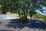 41790 Lilley Mountain Drive - Photo 55