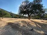 20718 Darsy Drive - Photo 7
