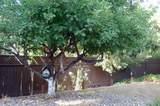 39681 Pine Ridge Road - Photo 52