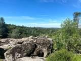 32447 Picayune Creek Ct - Photo 4