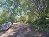 54106 Pine Tree Lane - Photo 25