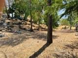 31081 Yosemite Springs Parkway - Photo 60