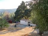 34958 Shady Oak Drive - Photo 2