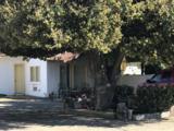 39569 Road 36 - Photo 9