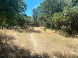 32447 Picayune Creek Ct - Photo 12