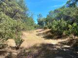 32447 Picayune Creek Ct - Photo 13