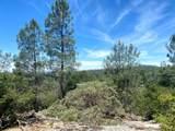 32447 Picayune Creek Ct - Photo 7