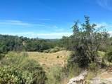 32447 Picayune Creek Ct - Photo 9