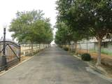 8316 Ashlan Avenue - Photo 2