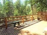 50823 Cedar Ridge Circle - Photo 19