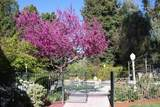 7453 Sequoia Avenue - Photo 43