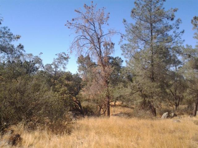16 Broken Heart Lane, Raymond, CA 93653 (#472777) :: Raymer Realty Group