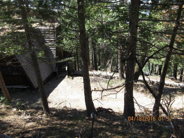 7365 Yosemite Park Way, Yosemite West, CA 95389 (#480714) :: FresYes Realty
