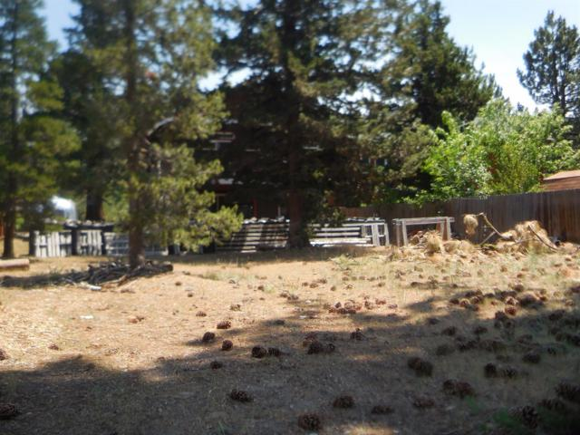 1991 Washoe Street, Tahoe, CA 96150 (#485940) :: FresYes Realty