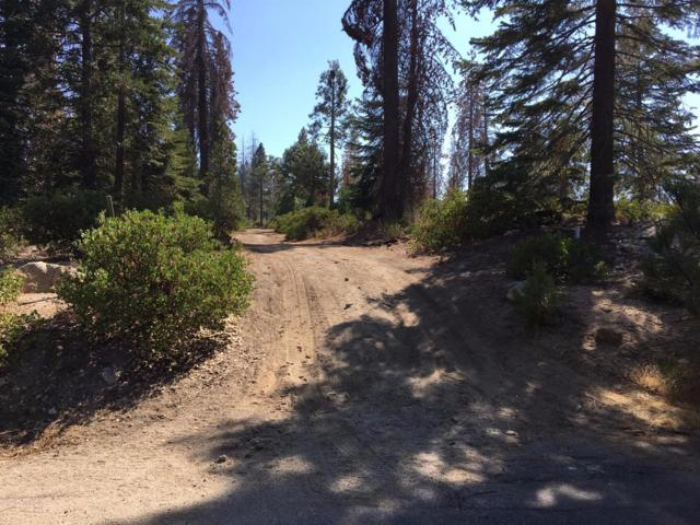 0 Mountain Heather, Shaver Lake, CA 93664 (#489340) :: Raymer Team Real Estate