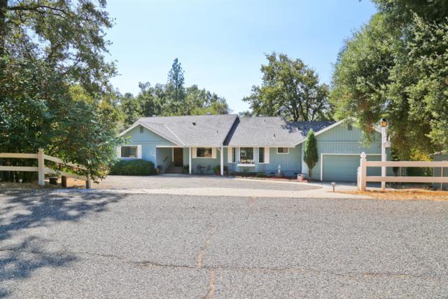 50128 Deer Meadow Way, Oakhurst, CA 93644 (#489796) :: Raymer Team Real Estate