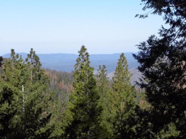 7493 Yosemite Park Way, Yosemite West, CA 95389 (#489826) :: FresYes Realty