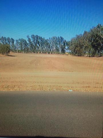 0 Road 30 1/2, Madera, CA 93636 (#490169) :: Raymer Team Real Estate