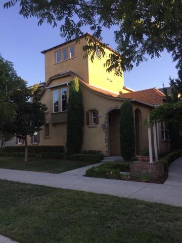 1724 N Dutch Avenue, Clovis, CA 93619 (#492488) :: Raymer Realty Group