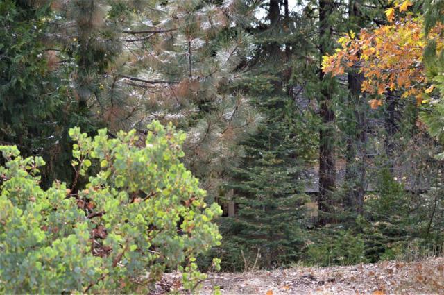 0 Musick Falls, Shaver Lake, CA 93664 (#492715) :: Raymer Realty Group