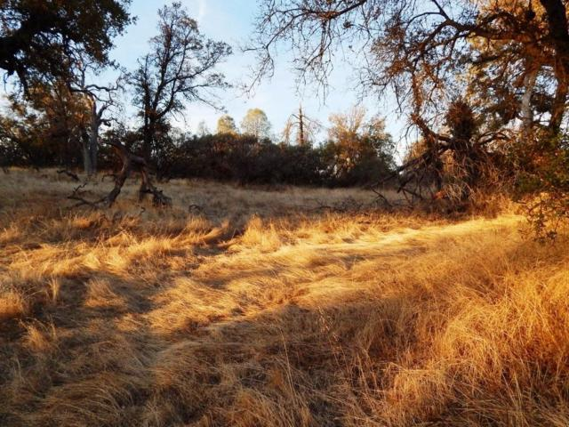 0-9.77 AC Highway 41, Coarsegold, CA 93614 (#493473) :: Raymer Realty Group
