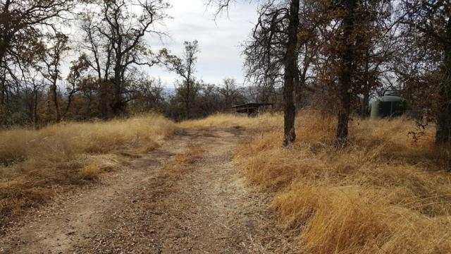 47478 Prospector Place, Coarsegold, CA 93614 (#493527) :: FresYes Realty
