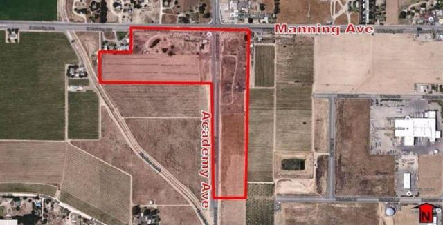 9000-9398 Academy, Parlier, CA 93648 (#493799) :: FresYes Realty