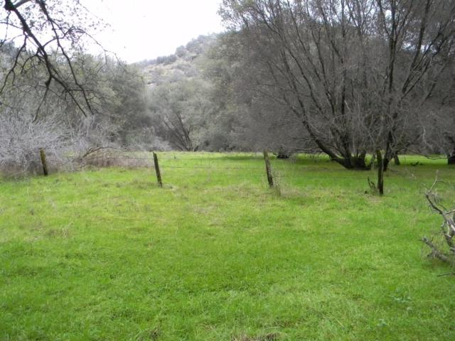 43705 North Fork Drive, Three Rivers, CA 93271 (#495543) :: FresYes Realty