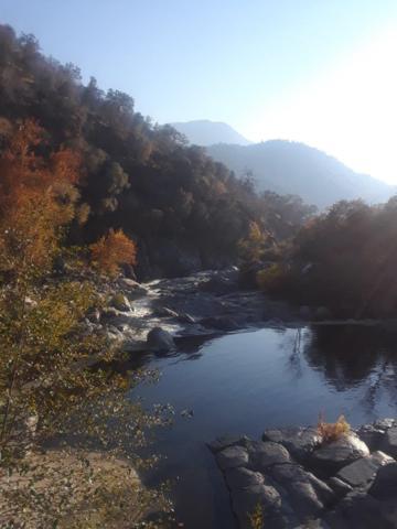 47000 Sierra Drive, Three Rivers, CA 93271 (#495924) :: FresYes Realty