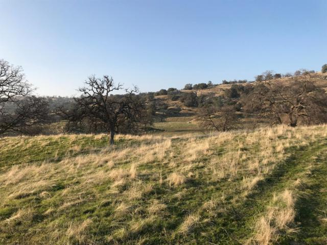 0 Rolling Oaks Dr, Friant, CA 93626 (#497355) :: Raymer Realty Group