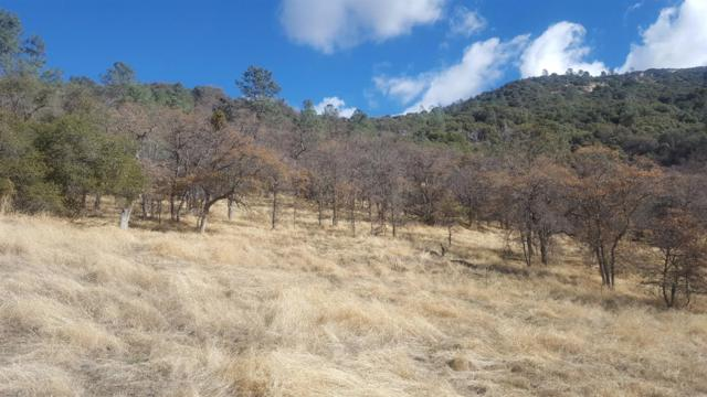 0 Tollhouse 42 Acres, Tollhouse, CA 93667 (#498293) :: FresYes Realty