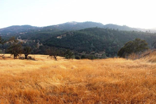 5454 Pearce Ranch Road, Mariposa, CA 95338 (#498807) :: FresYes Realty