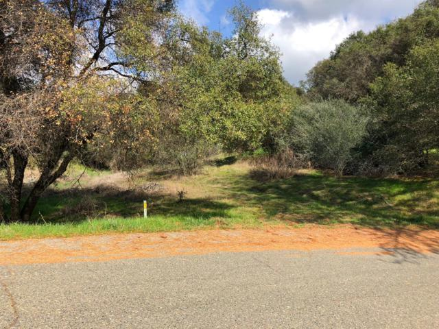 2988 Harvest Drive, Mariposa, CA 95338 (#499151) :: FresYes Realty
