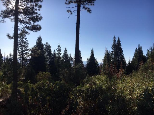 0 Wild Iris Lane, Shaver Lake, CA 93664 (#499282) :: FresYes Realty