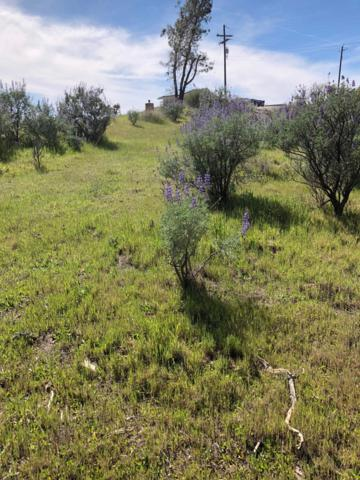 27925 Sky Harbour Road, Friant, CA 93626 (#499287) :: FresYes Realty