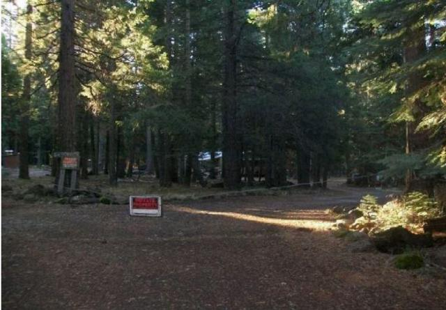 34791 Big Trees Lane, Out Of Area, CA 96088 (#501125) :: FresYes Realty